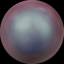 Swarovski gyöngy. 10mm. Iridescent Red Pearl (001 947)